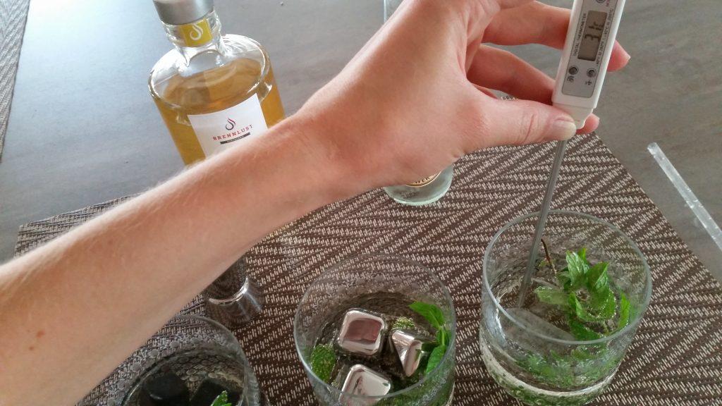 BRENNLUST Whiskey / Gin Stones im Test